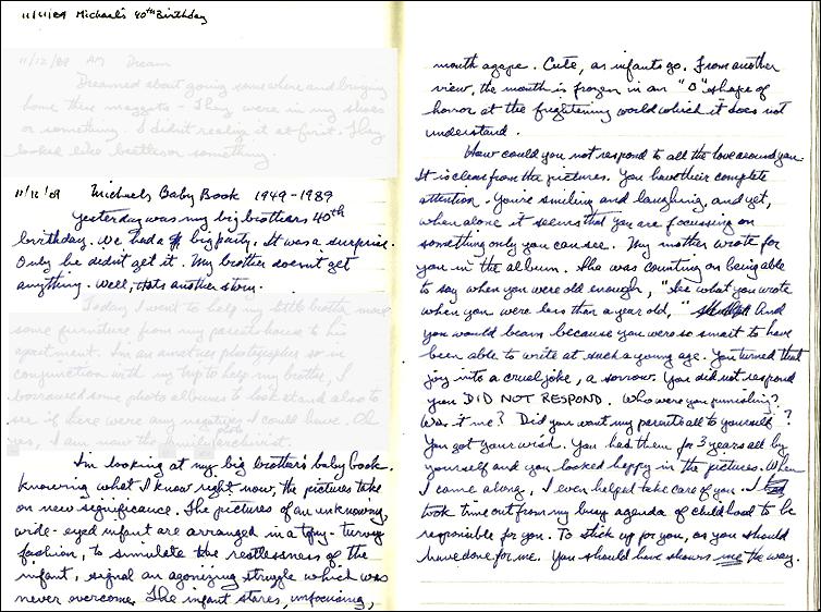 handwritten journal page November 11, 1989