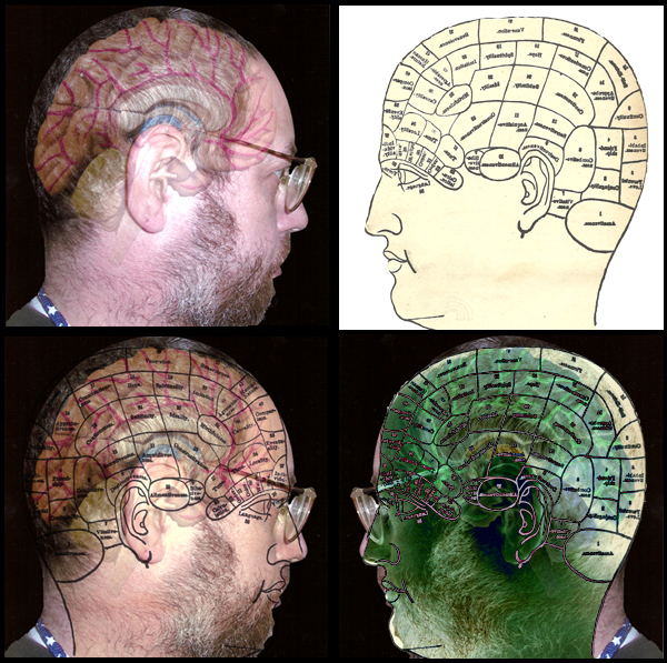 4 altered images of self portrait w/superimposed brain