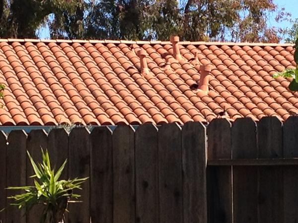 adobe roof photo