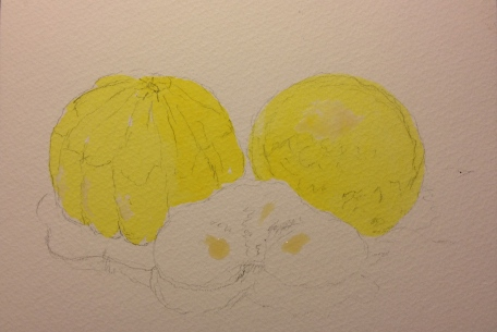 Butternut Squash, Blood Orange and Kiwi - sketch with lemon yellow only