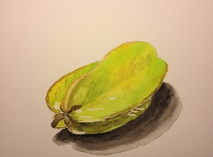 Watercolor Sketch -Starfruit