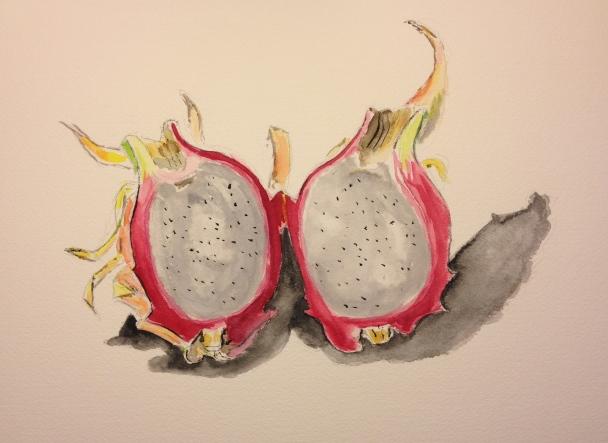 Watercolor Sketch - Dragonfruit Split Open