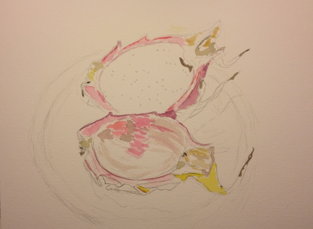 Watercolor Sketch - Unfinished Dragonfruit
