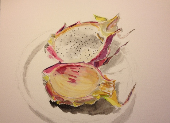 Watercolor Sketch - Dragonfruit Half Eaten