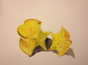Watercolor Sketch - Star Fruit