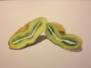 Watercolor Study - Strange-looking Kiwi