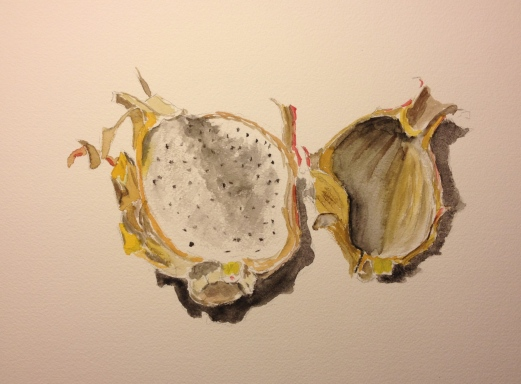 Watercolor Sketch - Dragonfruit Drying Up