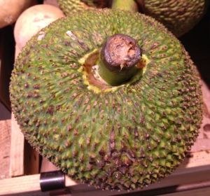 Photograph of a Single Jack Fruit at Whole Foods