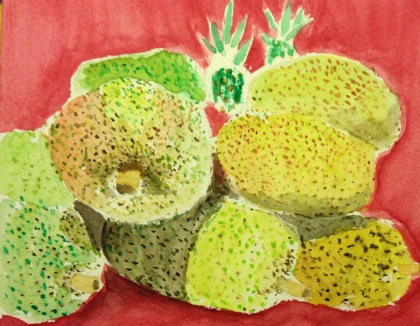 Watercolor Sketch of Jack Fruit at Whole Foods