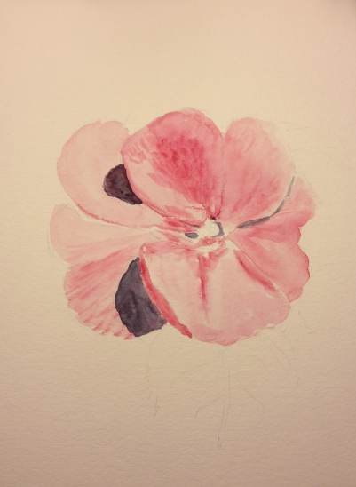Watercolor Sketch - Pink Flower First Stage