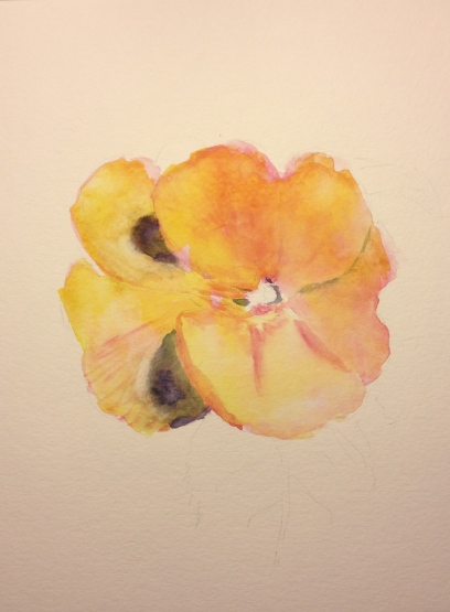 Watercolor Sketch - Pink Flower Second Stage
