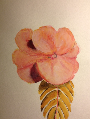 Watercolor Study - Pink Flower with Leaf - Stage 1
