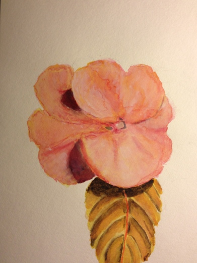 Watercolor Study - Pink Flower with Leaf - Stage 2