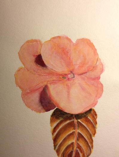 Watercolor Study - Pink Flower with Leaf - Stage 3