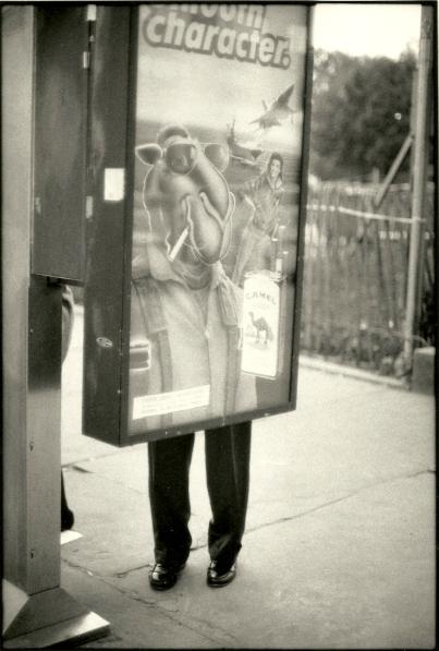 Photograph - Street Photography - Camel Poster + Man