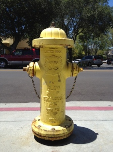 Photograph - Los Gatos Fire Hydrant