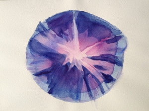 Watercolor Study - Morning Glory Step 2