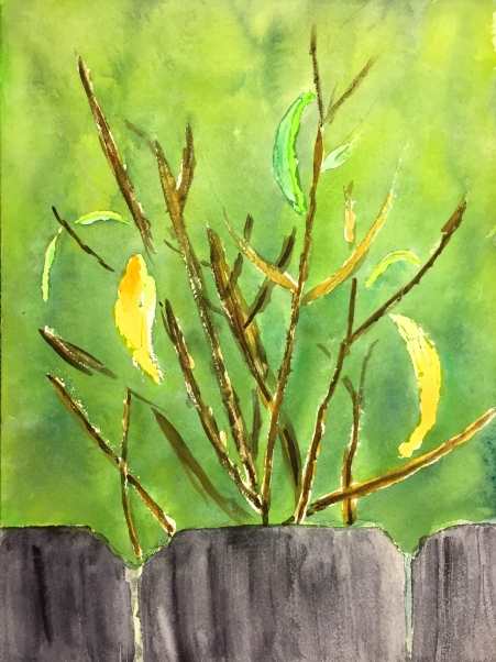 Watercolor: Twigs and leaves behind a fence, where the turkey is hiding