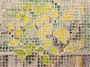 Watercolor: Partially Screened Fig Tree