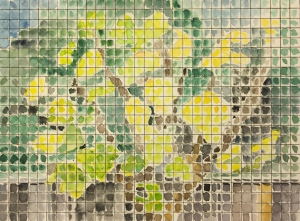 Watercolor: Fig Tree as seen through a screen