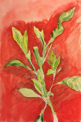 Watercolor : Continuation of 3-16-15 Sketch #1