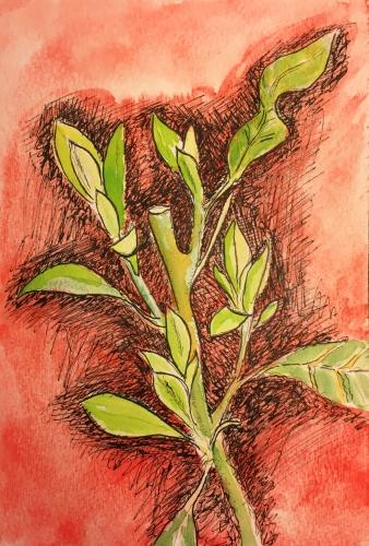 Watercolor : Continuation of 3-16-15 Sketch #2