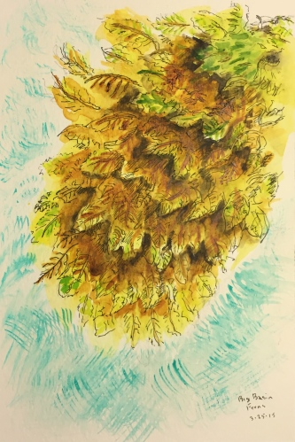 Watercolor Pen and Ink: Ferns in Big Basin State Park