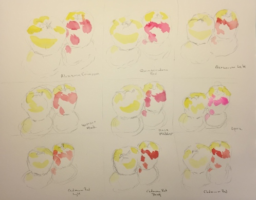 Watercolor: Stage 1 Color Testing Apple Chart