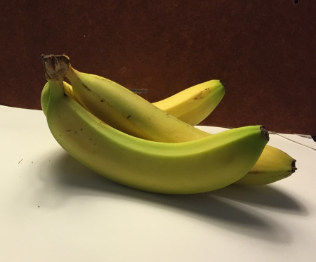Photograph: Bunch of Bananas