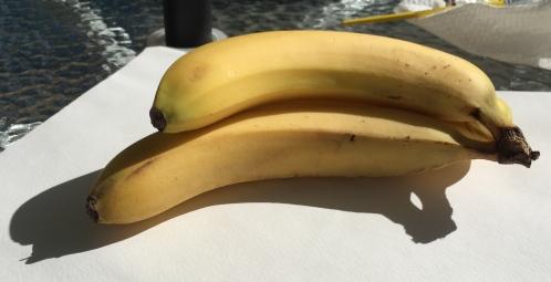 Photograph: Bananas Outside