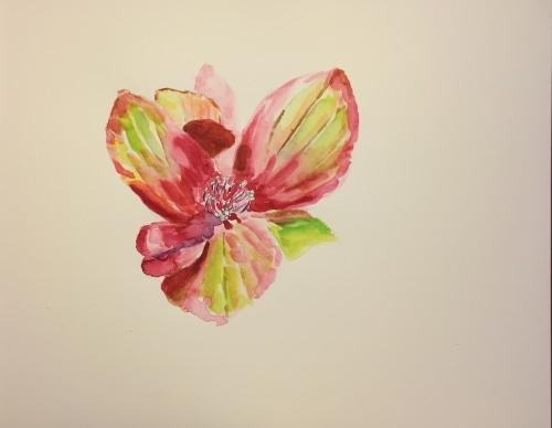 Watercolor: Hydrangea Flowerlet