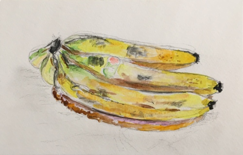 Watercolor: Burbank Bananas
