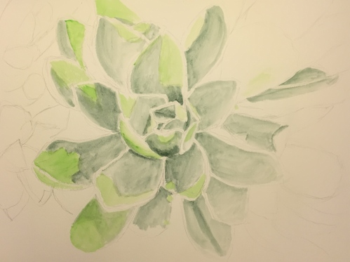 Watercolor: Underpainting of Terre Verte and Green #2
