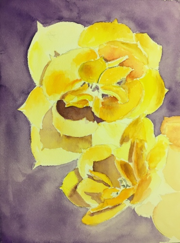 Watercolor: Yellow Succulent Flowers