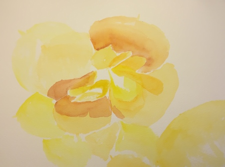 Watercolor: Yellow Succulent Flower - Underpainting