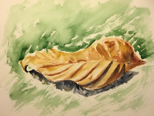Watercolor: Desiccated Brown, Pleated Leaf on the Ground