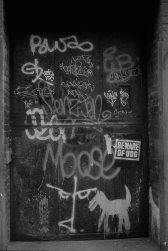 Photograph: Door with Dog Graffiti