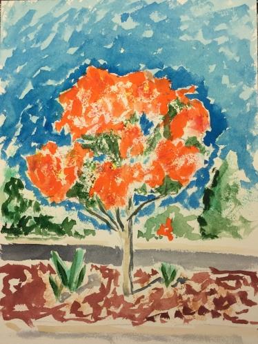 Watercolor: Representational Tree Outside Peet's Coffee