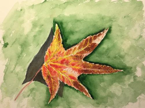 Watercolor: Representational - Red Leaf