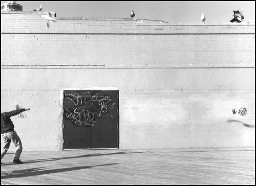 Photograph - Boardwalk
