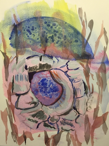 Watercolor: Abstract Tree Barks