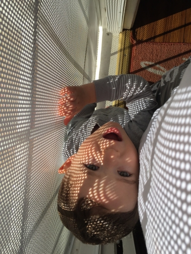 Photograph: Grandson in the Sun