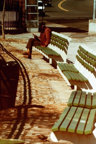 Photograph: Park Bench in Brooklyn 1988