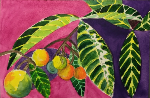 Watercolor: Nespoli Leaves and Fruit