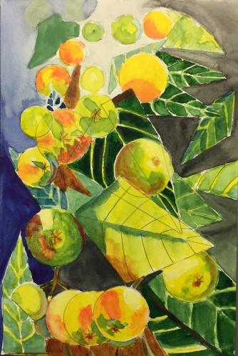 Watercolor: Abstract Nespoli Fruit
