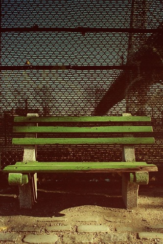Photograph: Williamsburgh Bridge, Bench and Fence