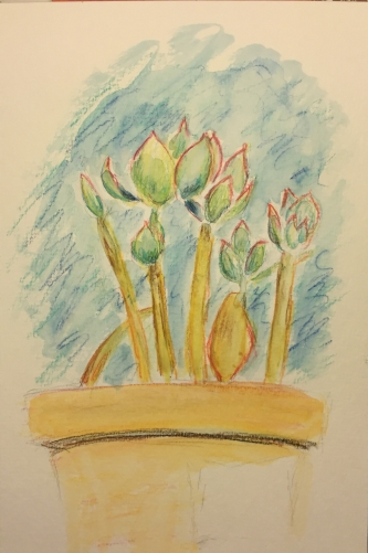 Watercolor Pencil: Succulent with background