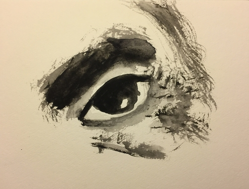 Watercolor: #2 Sad Eye, Extracted from Crying Mike Photo