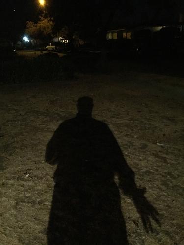 Photograph: Shadow Portrait