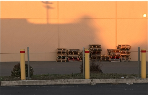 Photograph: Telephone Pole Shadow on Building